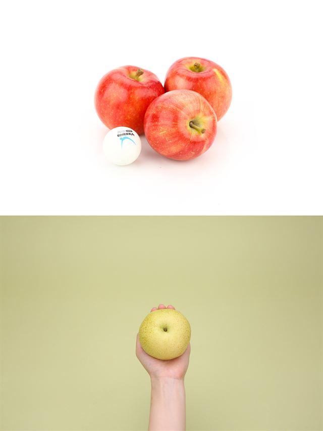 """[톡톡TALK] """"테니스공 사과, 탁구공 배 아시나요?"""" 사과ㆍ배, 이젠 작은 게 경쟁력"""