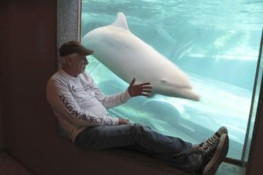 """""""쇼 돌고래들이 인간과 교감한다고? 천만에…"""""""