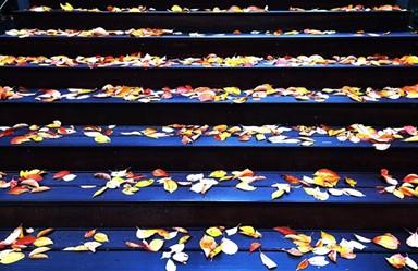 [고영권의 도시풍경]가을의 흔적