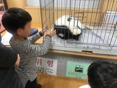 동물은 괴롭고 어린이는 질병 노출… 이동 동물원 관리 사각지대