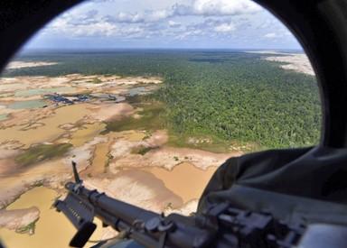 아마존 죽이는 '골드러시'