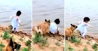 '여기서 기다려, 위험한 곳은 내가 갈게!' 소녀 대신 강물 뛰어든 반려견
