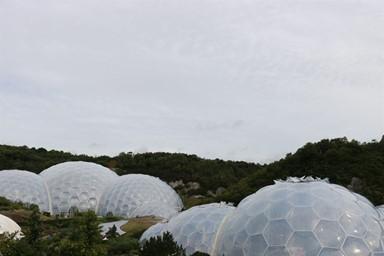 식물 중심 생태공원 '에덴 프로젝트'