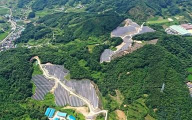 산과 들 뒤덮은 태양광 패널… 환경 파괴하는 친환경에너지