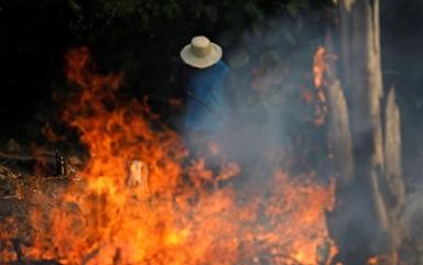 아마존을 삼킨 화마