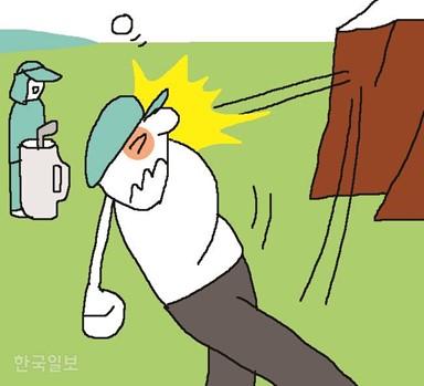 """""""바위 넘기려 친 골프공 튕겨 실명  고객 안 말린 캐디에도 배상 책임"""""""