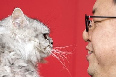 나, 40대, '무혼남', 고양이랑 둘이 산다. 그래서 행복하다