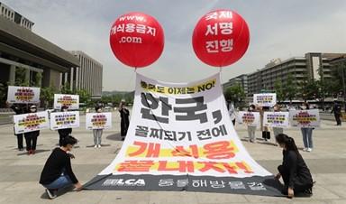 """""""한국, 꼴찌 되기 전 개 식용 끝내자"""" 동물단체, 국제서명운동 돌입"""