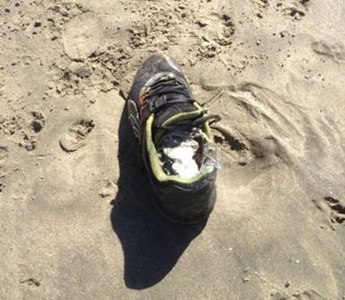 해변에 밀려든 잘린 발목 21개