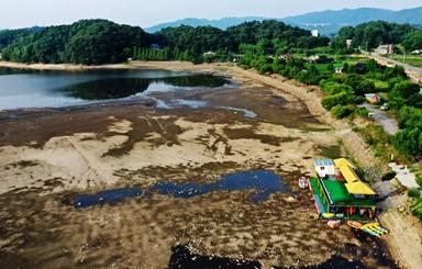 [아침을 열며] 수족관이 된 우리 강
