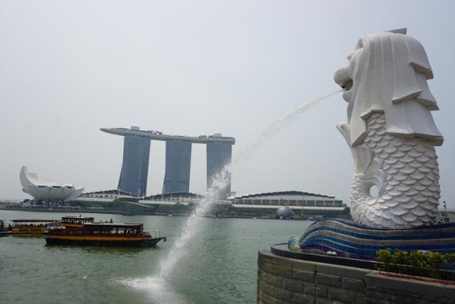 인구 1% 코로나 감염 싱가포르, 하늘길 여는 까닭